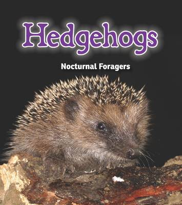 Hedgehogs Nocturnal Foragers by Rebecca Rissman