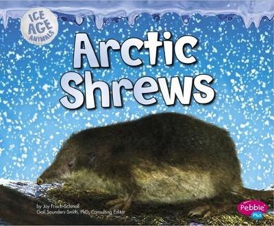Arctic Shrews by Joy Frisch-Schmoll
