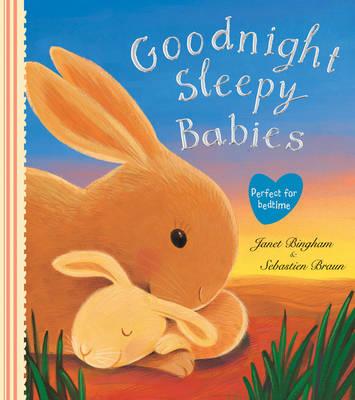 Goodnight Sleepy Babies by Janet Bingham
