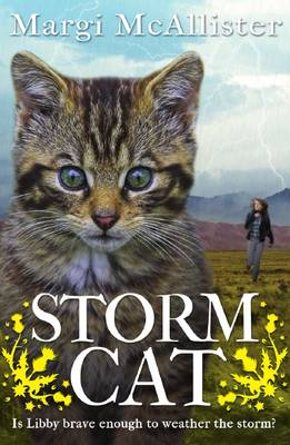 Storm Cat by Margi McAllister