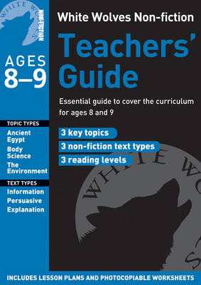 Teachers' Guide Year 4 by Gill Matthews