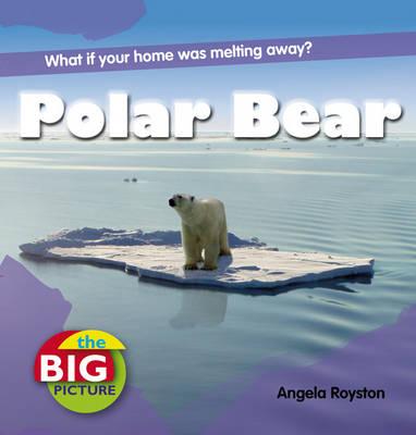 Polar Bear by Anita Ganeri