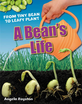 A Bean's Life Age 6-7, below average readers by Angela Royston