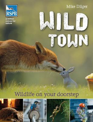 Wild Town by Mike Dilger