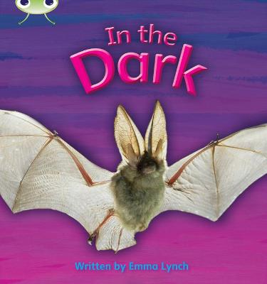 Phonics Bug Non-fiction Set 10 In the Dark by Emma Lynch