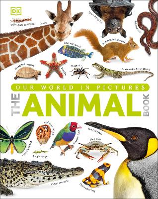 The Animal Book A Visual Encyclopedia of Life on Earth by DK