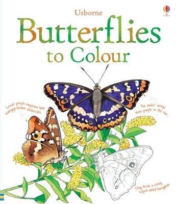 Butterflies to Colour by Megan Cullis