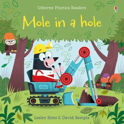 Mole in a Hole by Lesley Sims