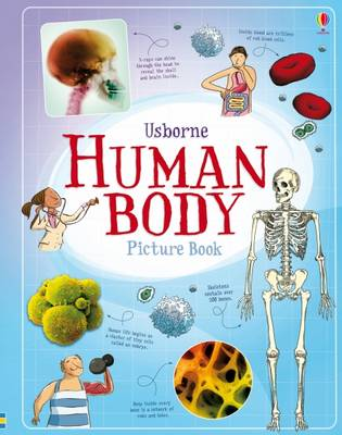 Human Body Picture Book by Alex Frith