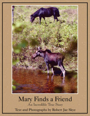 Mary Finds a Friend by Robert Jae Skye