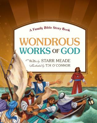 Wondrous Works of God A Family Bible Story Book by Starr Meade