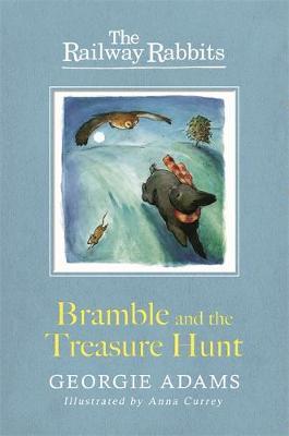 Railway Rabbits: Bramble and the Treasure Hunt Book 8 by Georgie Adams