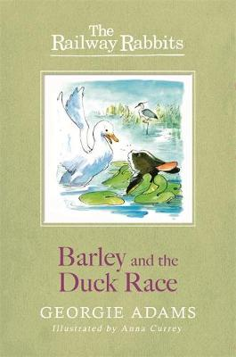 Railway Rabbits: Barley and the Duck Race Book 9 by Georgie Adams
