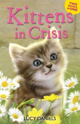 Animal Ark: Kittens in Crisis Tabby in the Tub & Cats in the Caravan by Lucy Daniels