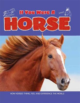 If You Were a Horse by Clare Hibbert