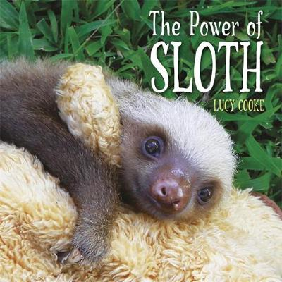 The Power of Sloth by Lucy Cooke