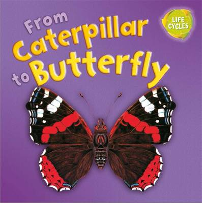 Lifecycles: From Caterpillar to Butterfly by Gerald Legg