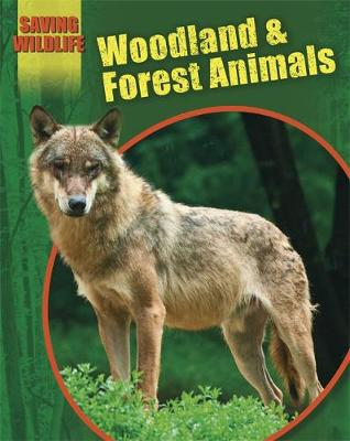 Saving Wildlife: Woodland and Forest Animals by Sonya Newland