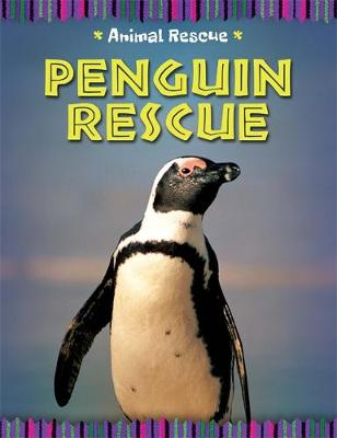 Animal Rescue: Penguin Rescue by Clare Hibbert
