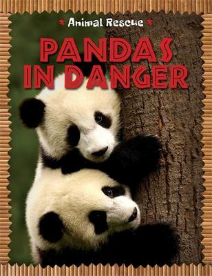 Animal Rescue: Pandas in Danger by Clare Hibbert