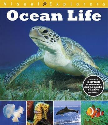 Visual Explorers: Ocean Life by Paul Calver, Toby Reynolds