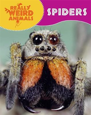 Really Weird Animals: Spiders by Clare Hibbert