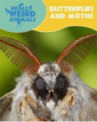 Really Weird Animals: Butterflies and Moths by Clare Hibbert