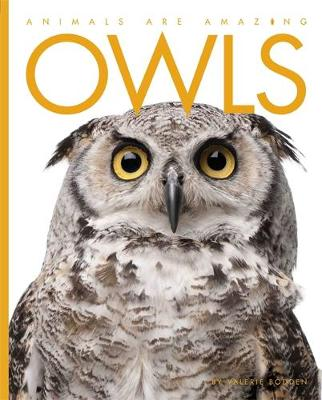 Animals Are Amazing: Owls by Valerie Bodden