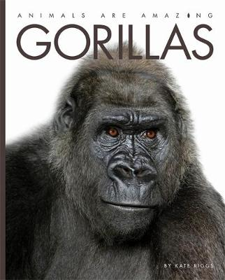 Animals Are Amazing: Gorillas by Kate Riggs