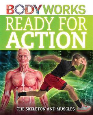 BodyWorks: Ready for Action: The Skeleton and Muscles by Thomas Canavan