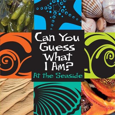 Can You Guess What I Am?: At the Seaside by J. P. Percy