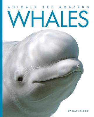 Animals Are Amazing: Whales by Kate Riggs