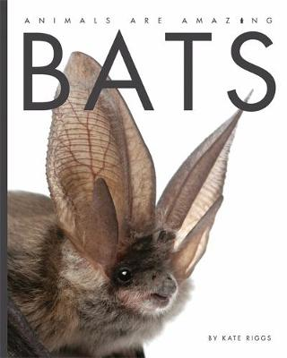 Animals Are Amazing: Bats by Kate Riggs