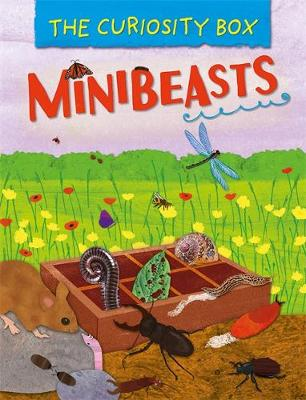 The Curiosity Box: Minibeasts by Peter Riley