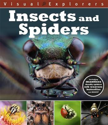Visual Explorers: Insects and Spiders by Paul Calver, Toby Reynolds