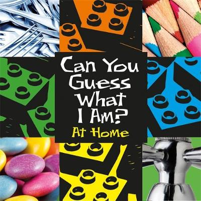Can You Guess What I Am?: At Home by J. P. Percy