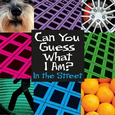 Can You Guess What I Am?: In the Street by J. P. Percy