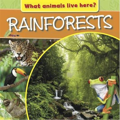 What Animals Live Here?: Rainforests by M. J. Knight