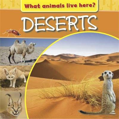 What Animals Live Here?: Deserts by M J Knight