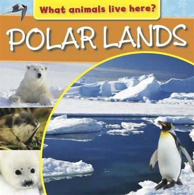 What Animals Live Here?: Polar Lands by M J Knight