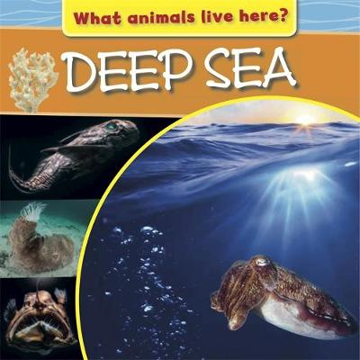 What Animals Live Here?: Deep Sea by M. J. Knight