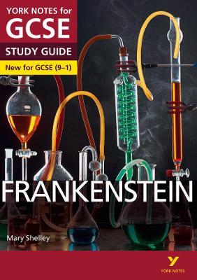 Frankenstein: York Notes for GCSE (9-1) by Alexander Fairbairn-Dixon, Emma Page