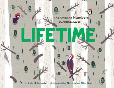 Lifetime The Amazing Numbers in Animal Lives by Lola M. Schaefer