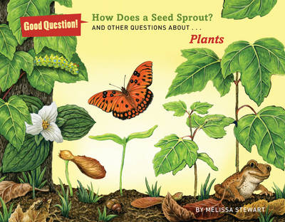 How Does a Seed Sprout? And Other Questions About Plants by Melissa Stewart