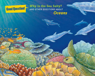 Why Is the Sea Salty? And Other Questions About Oceans by Ben Richmond