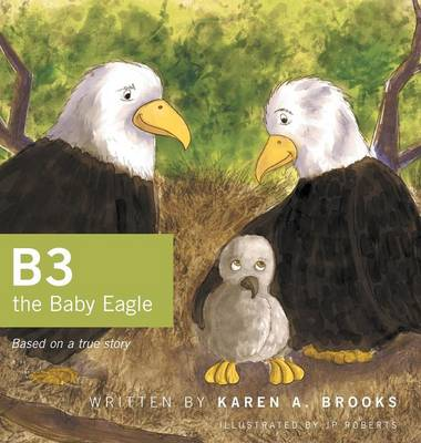 B3 the Baby Eagle Based on a True Story by Karen A Brooks