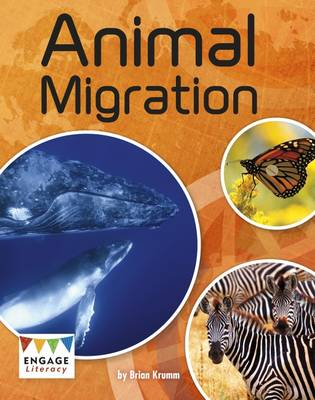 Animal Migration by Brian Krumm