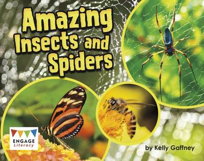 Amazing Insects and Spiders by Kelly Gaffney