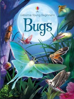 Young Beginners Bugs by Emily Bone