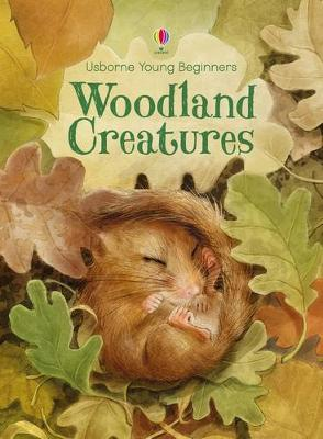 Young Beginners Woodland Creatures by Emily Bone